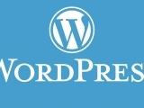 Word Press Certificate