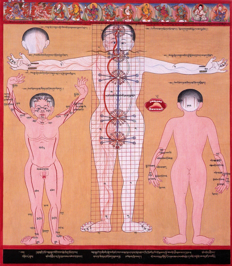 Original source: https://upload.wikimedia.org/wikipedia/commons/9/90/Chakras_and_energy_channels_2_%283749594497%29.jpg