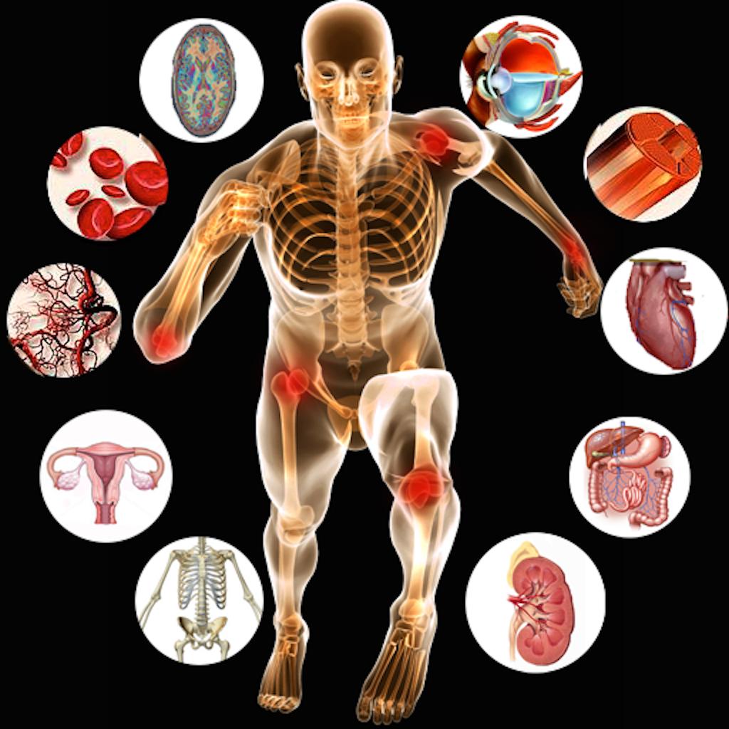 SMCC: Anatomy & Physiology II
