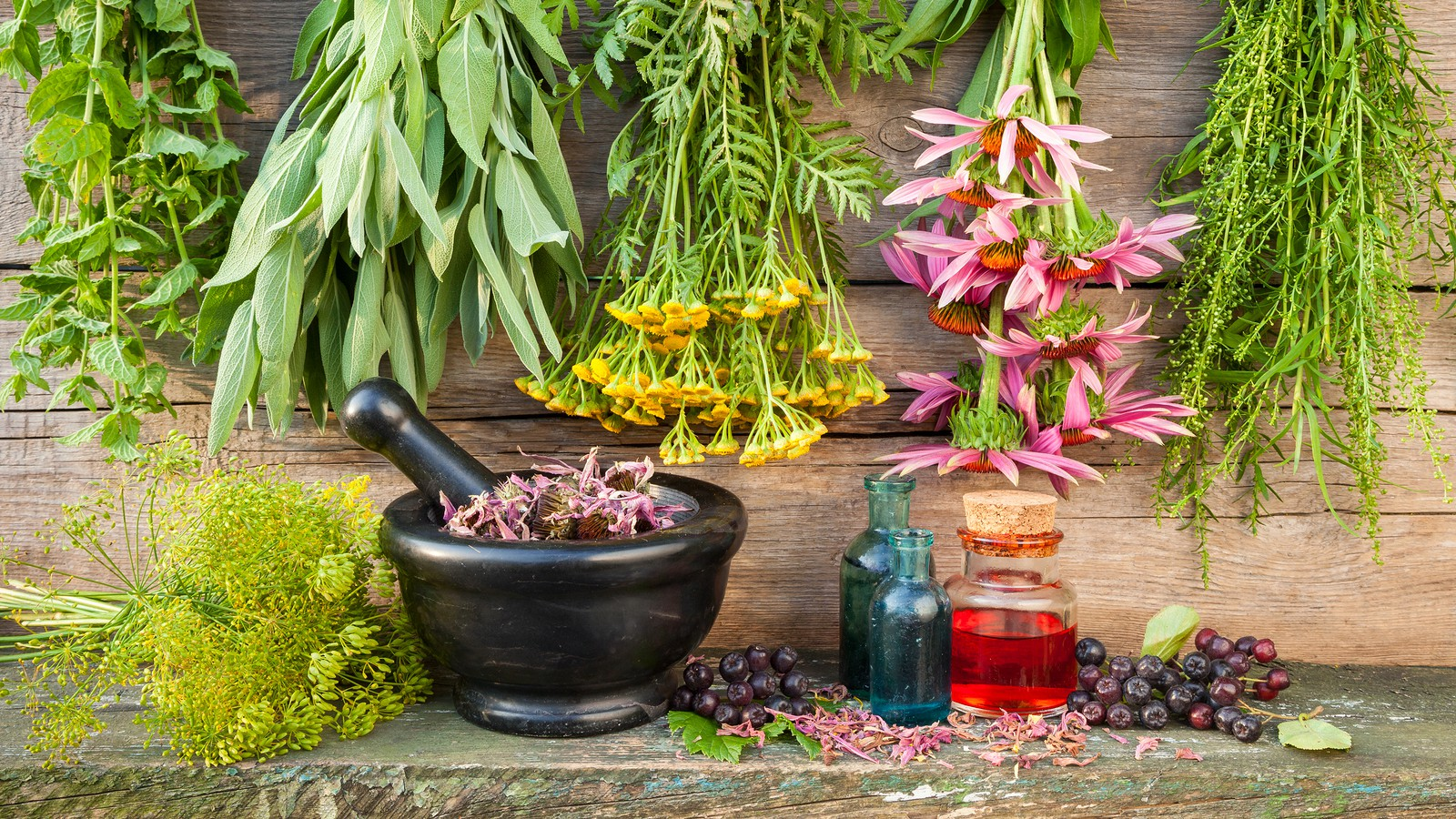 Spring Medicine