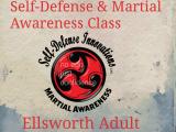Women's Self Defense-Martial Awareness