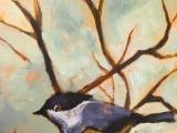 Paint a Bird Step-by-Step