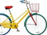 Bike Skills Course