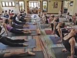 Beginner's Vinyasa Yoga