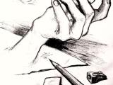 Beginner's Observational Drawing