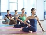 Beginner Level Yoga