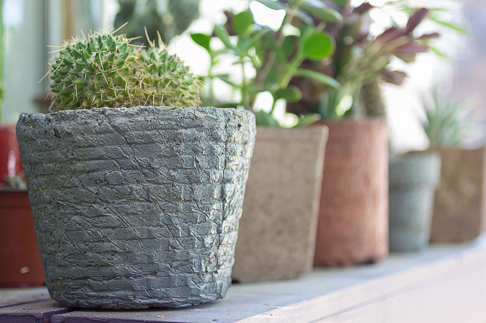 Make Your Own Hypertufa Plant Container