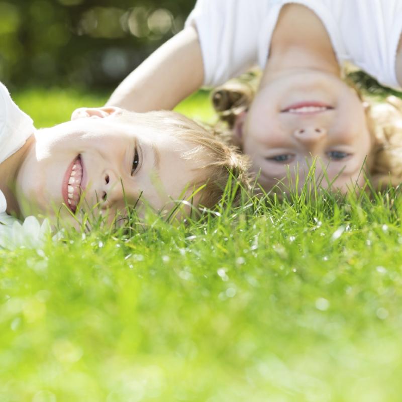 Original source: https://www.manderley.com/wp-content/uploads/2015/08/Manderley-Healthy-Lawn-Image.jpg