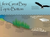 Reflections on the Water - the health of the Great Bay/Piscataqua Watershed
