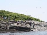 Stratton Island Trip