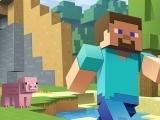 Minecraft: STEAMcraft Club