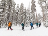 Learn to Cross Country Ski
