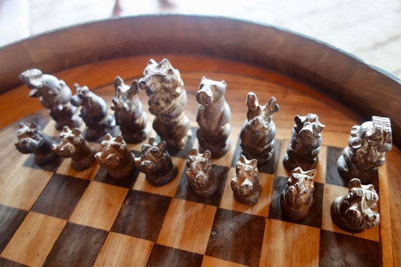 Original source: https://upload.wikimedia.org/wikipedia/commons/thumb/8/8f/Chess_Game_with_African_Animals_%2837674559596%29.jpg/1280px-Chess_Game_with_African_Animals_%2837674559596%29.jpg
