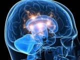 NCPD: Essential Neuroscience for Mental Health Professionals