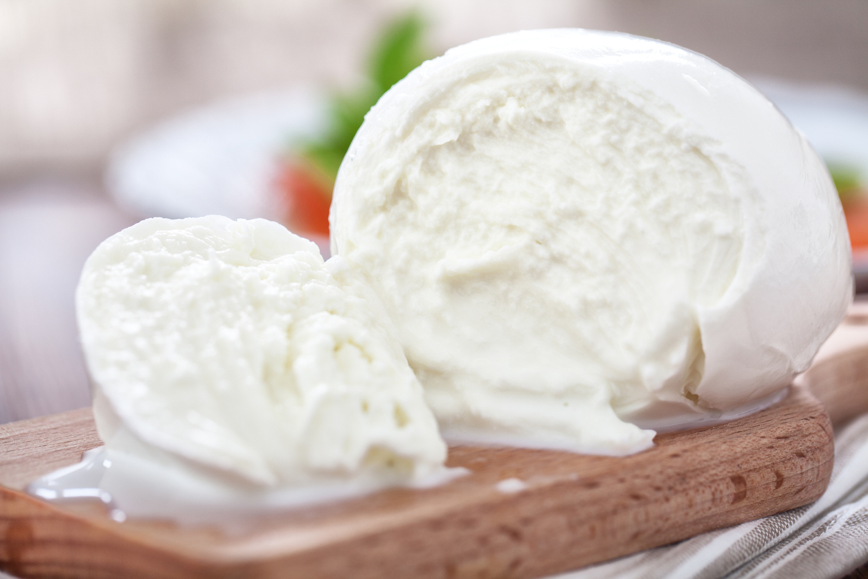 Mozzarella and Ricotta Cheese-Session II