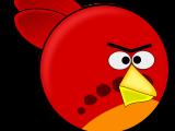 Angry Bird Physics Camp