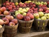 Preserving the Harvest: Apples and More