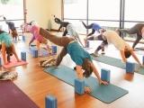 Slow Flow Yoga 2/1