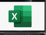 Microsoft Excel: Basic