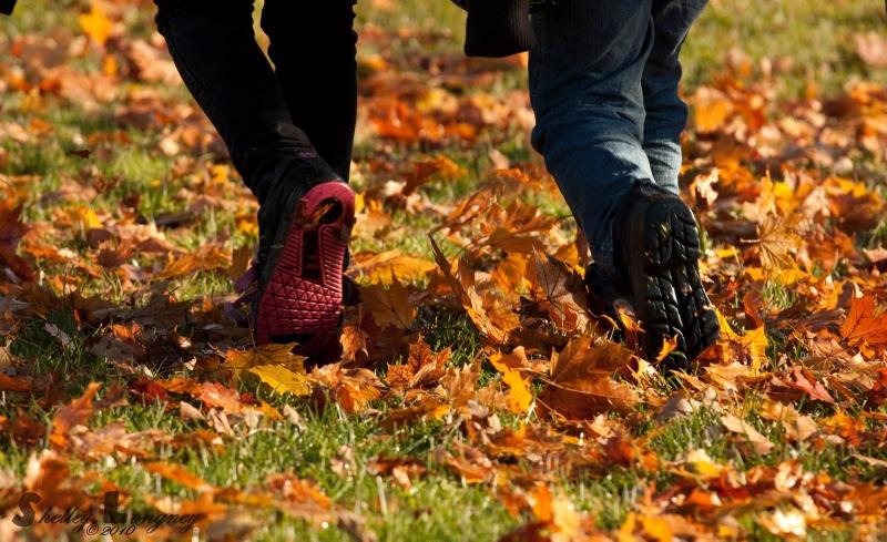 Original source: http://2.bp.blogspot.com/_ahBETG0Nfj8/TMjAnO_bx9I/AAAAAAAAA2Q/PwzX8YcvSr8/s1600/fall+walk.jpg