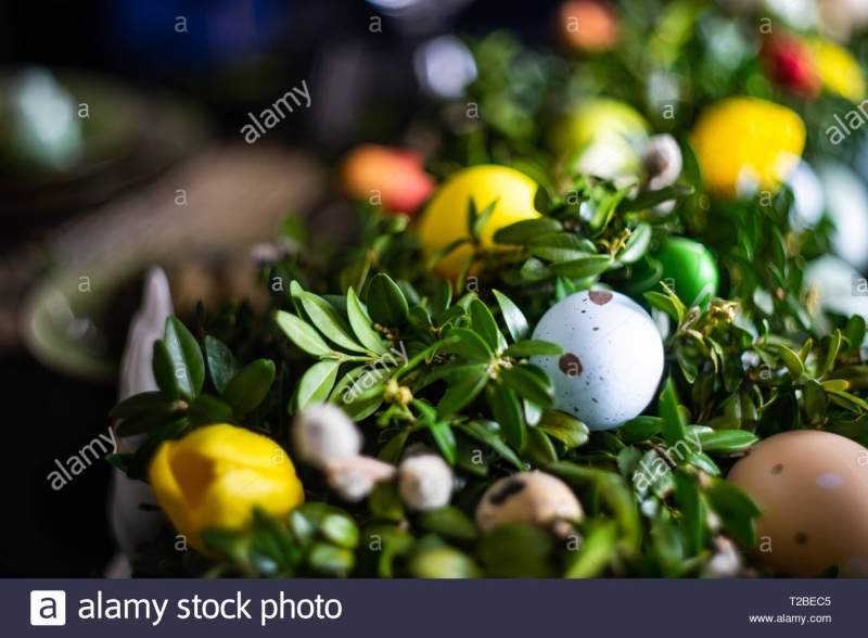 Original source: https://c8.alamy.com/comp/T2BEC5/easter-holiday-natural-composition-with-boxwood-colored-eggs-and-spring-flowers-T2BEC5.jpg
