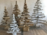 Virtual  Class - Upcycled Recycled Driftwood Trees