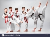 CHAMPION FORCE ATHLETICS MARTIAL ARTS