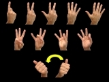 American Sign Language I - ASL for Everyone