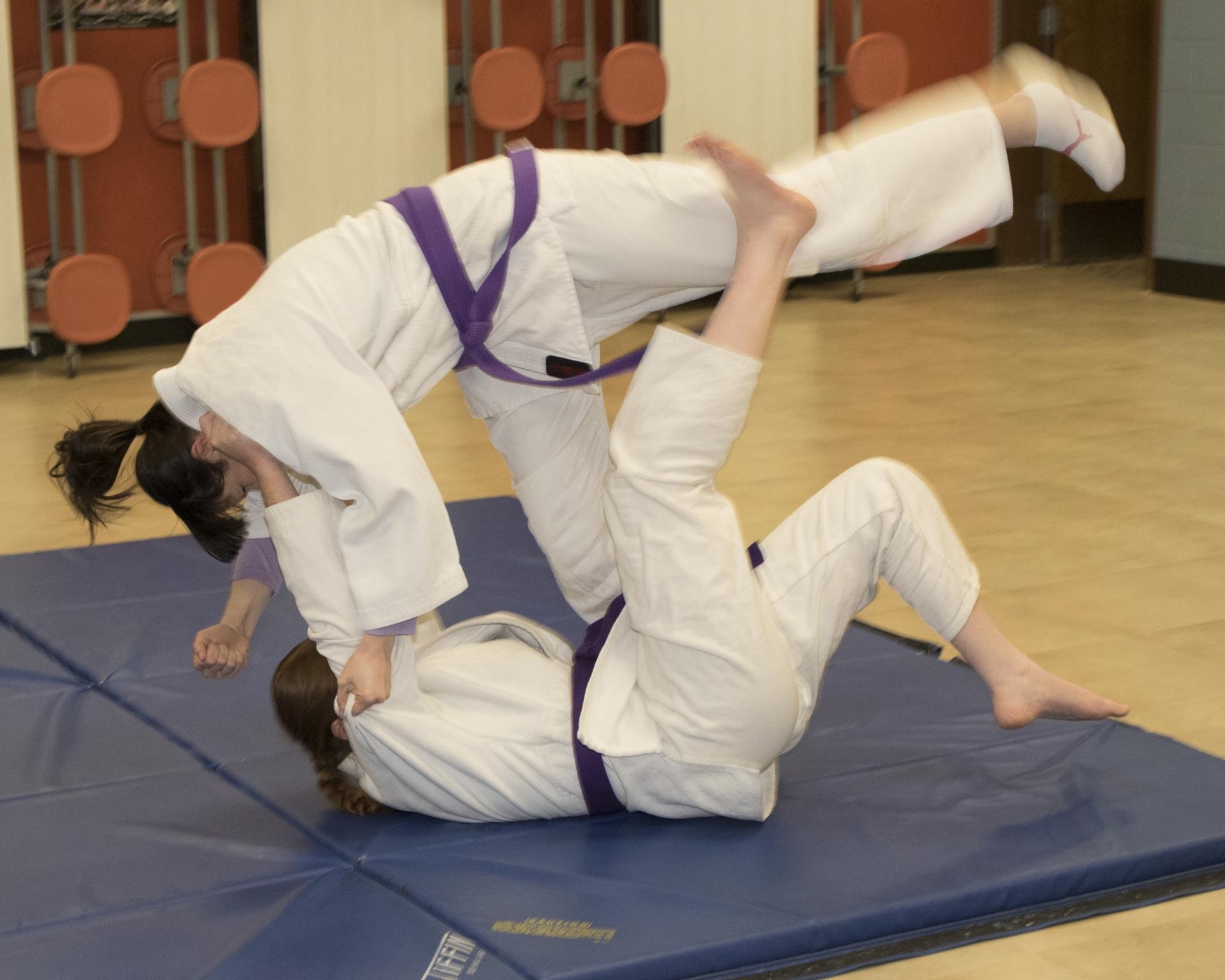 Traditional Jujutsu