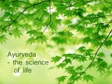 Original source: http://cdn.ahamyoga.com/wp-content/uploads/2016/01/ayurveda-ahamyoga.gif?677971