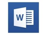 Microsoft Word Processing