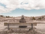 Living with Alzhiemers: For Caregivers - The Middle Stages (Online)