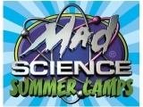 Mad Science Brixology & Engineering Camp