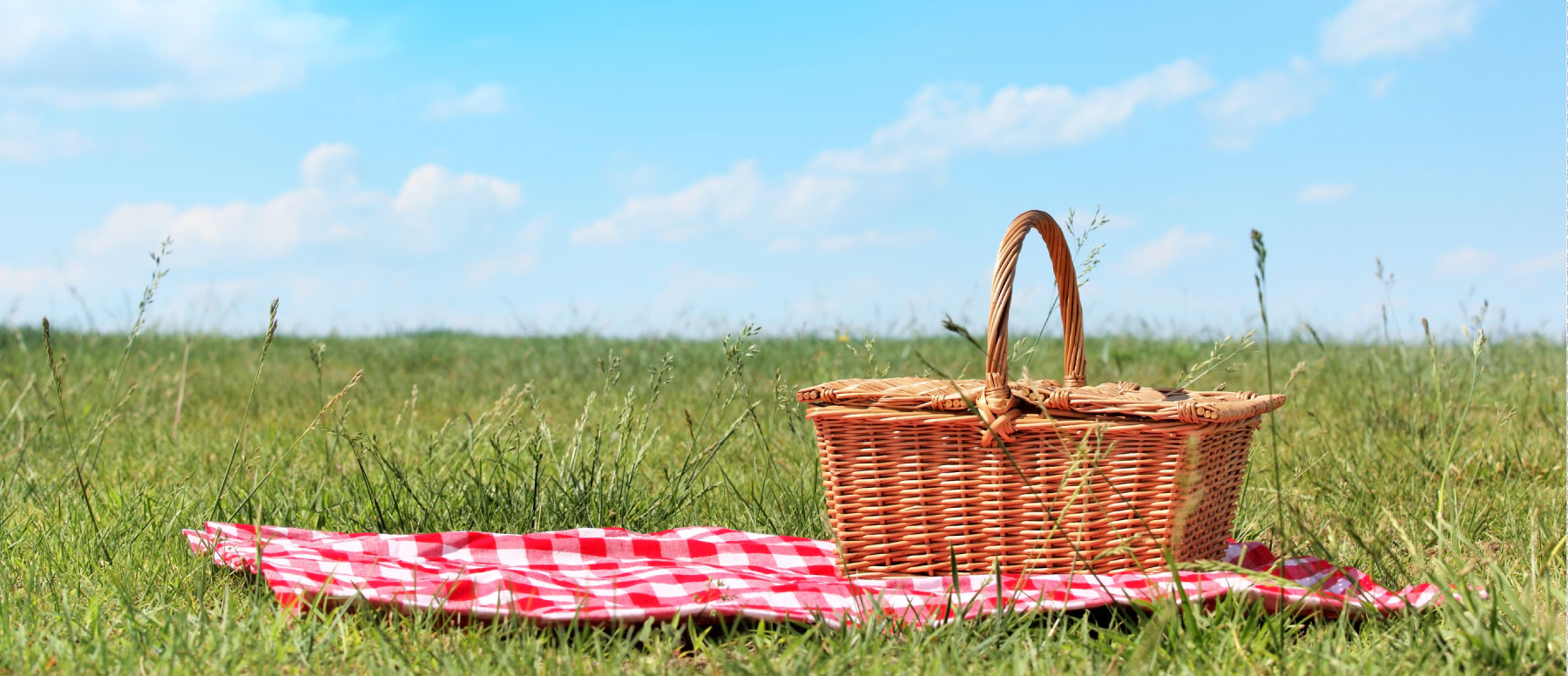 Let's Pack a Picnic!