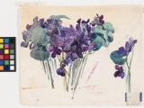 Watercolor for All Levels - Session 2 (Virtual Class)
