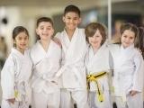 Martial Arts for Kids (Ages 6-11) - Appleton