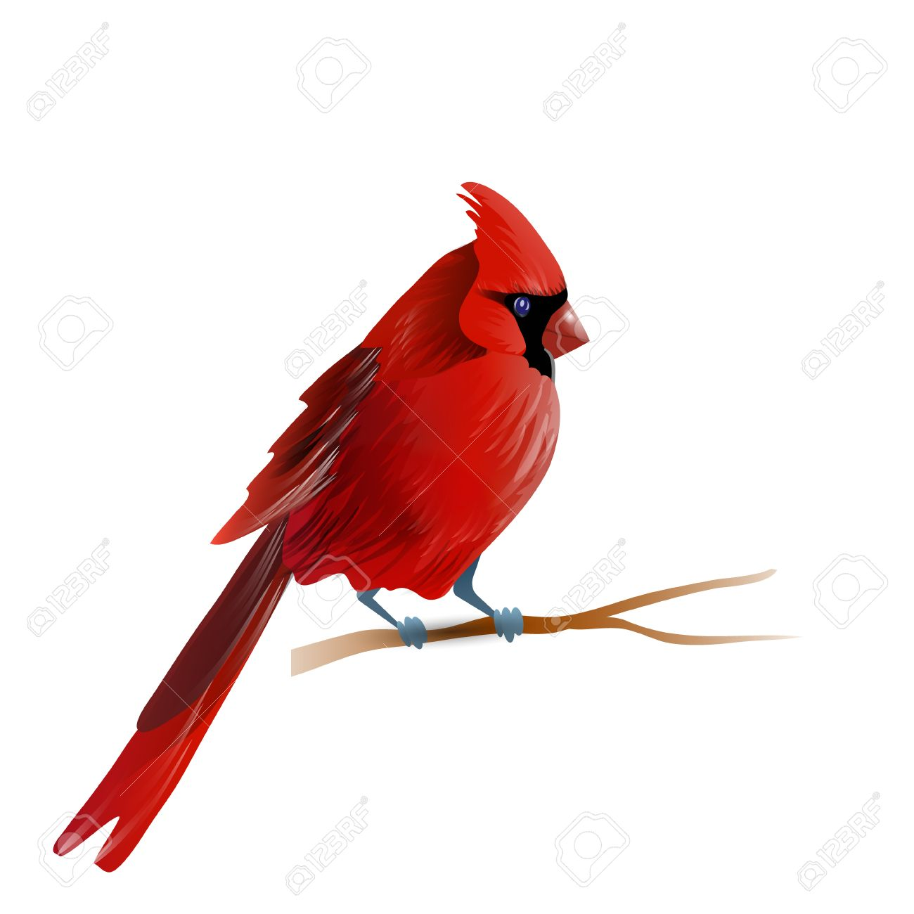 Red Cardinal Paint Night