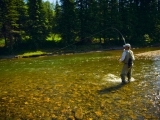 Fly Fishing - Basic Fly Casting