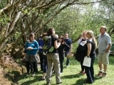 Wild Food Foraging Walk