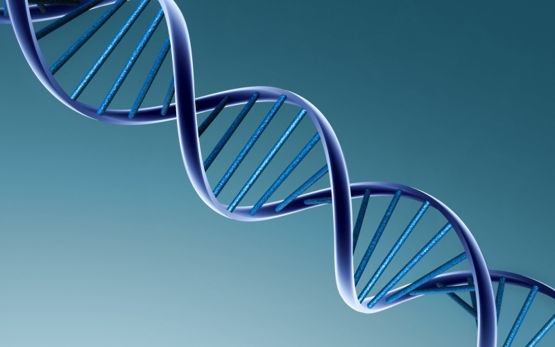 Original source: http://ewallpaperhub.com/wp-content/uploads/2015/02/biology-Wallpaper-1.jpg