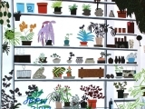 Print and Collage Your Plants