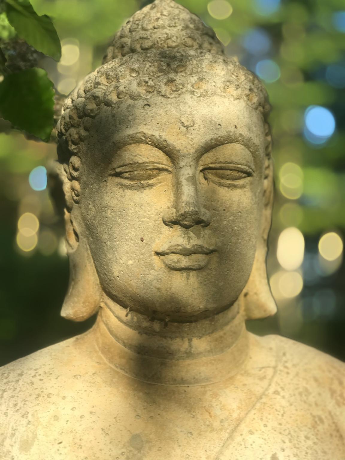 Introduction To Mindfulness Meditation - Session II