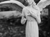 Healing Angels**New Start Date - 12/2** - Online Class