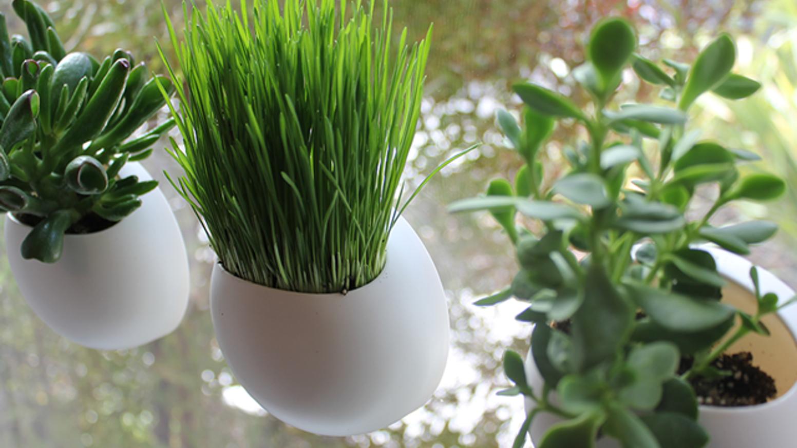 GAR 02 - Workshop: Bringing the Garden Indoors