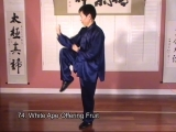 Tai Chi for Balance Enhancement – Part 2