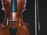 Fiddle- Beginners