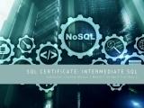 Intermediate SQL : Part of SQL Certificate March