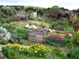 Permaculture – the Art of Ecological Design