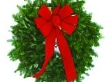 Balsam Fir Christmas Wreath - Fall 2017