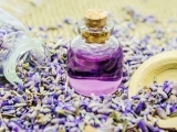 Make and Take Gifts w/Essential Oils